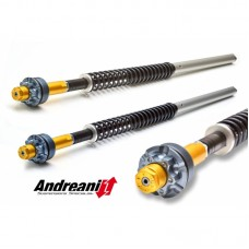 Ducabike Andreani 20mm Fork Cartridge Kit for Ducati Monster 696 with Marzocchi Forks
