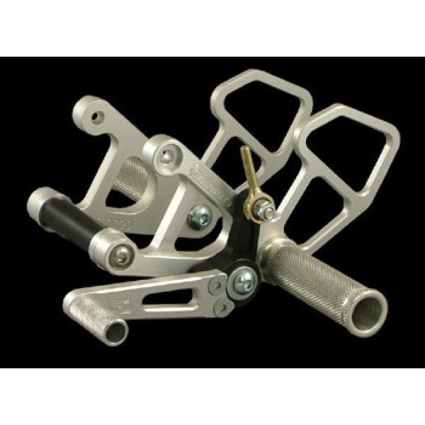 WOODCRAFT Aprilia RSV / R - Factory (04-09) Tuono (06-10) GP RearStets (with shifter)