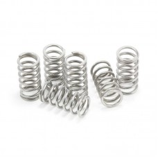 EVR Dry Clutch Stainless Steel Spring Set