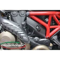 CARBONVANI - DUCATI MONSTER 821 / 1200 CARBON FIBER TIMING BELT COVER KIT -? UPPER AND LOWER