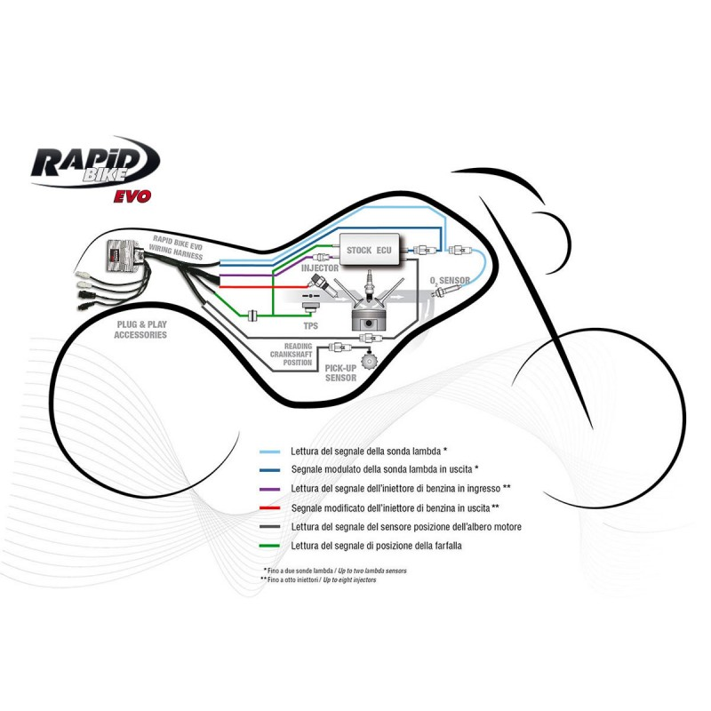 page_rapidbike_evo_pann_zoom_eea85061 3aa4 4c6f 93be 079264a9887a 800x800 evo self adaptive fueling control module for the kawasaki klx 250 Ford Fuel Injection Harness at reclaimingppi.co