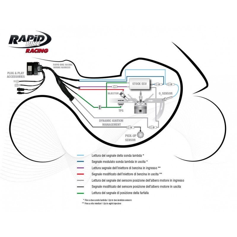 Rapidbike Racing Self Adaptive Fueling Control Module For The KTM 690 Duke R 20132015: KTM 690 Duke Wiring Diagram At Anocheocurrio.co