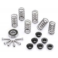 EVR Dry Clutch Stainless Steel Hardware kit (Retainers  Springs  Screws  and Throw-out Bearing)